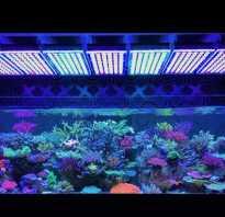 Подсветка в аквариум своими руками