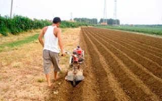 Нарезка гребней для посадки картофеля мотоблоком видео